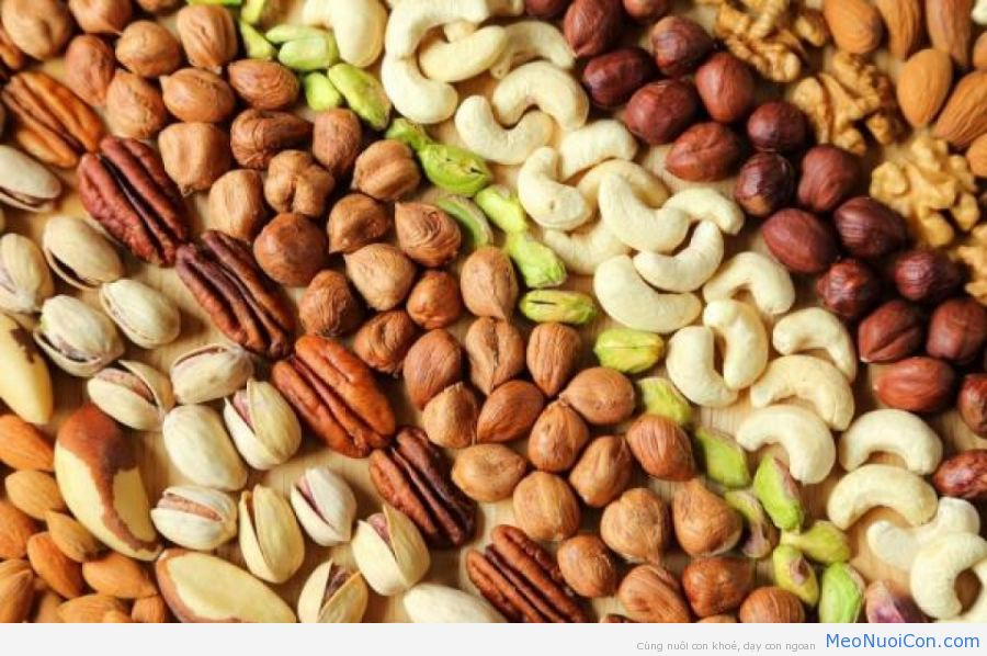 164129_Regular-nut-consumption-linked-to-less-inflammation
